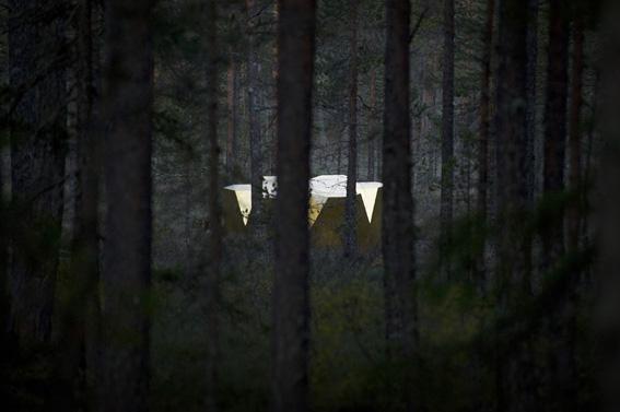 Hamra_Nationalpark_foto_Henrik_Lindvall_hof
